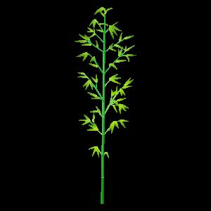 竹 (イラストレーター)の画像 p1_6
