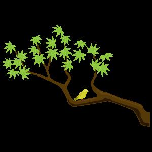 日立の樹(この木なんの木) / ヒデ夕樹 ギターコード/ …