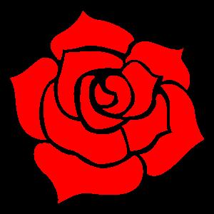 バラの花素材2