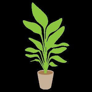 「イラスト 無料 植物」の画像検索結果