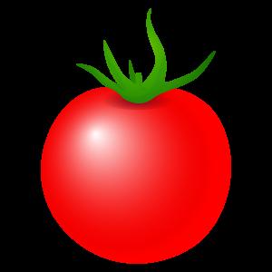 こちらもプチトマトのイラスト ... : 果物 絵 : すべての講義
