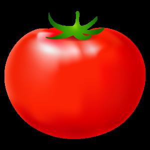 トマトのイラスト5