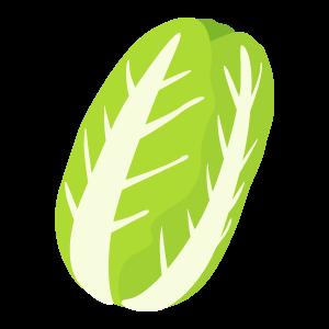 白菜の無料素材 | 花、植物イラスト Flode illustration (フロデ ...